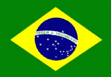 BRAZIL - HAND WAVING FLAG (MEDIUM)